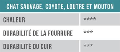 Chat sauvage, coyote, loutre, mouton - Chaleur, durabilité de la fourrure, durabilité du cuir